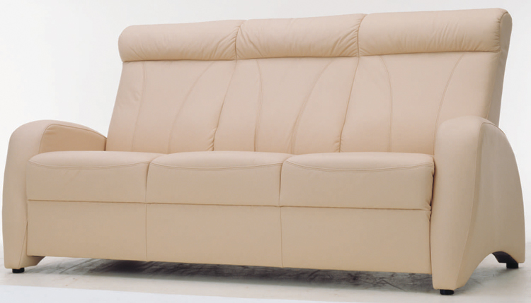 3D Model of leather living room sofa people (including materials)