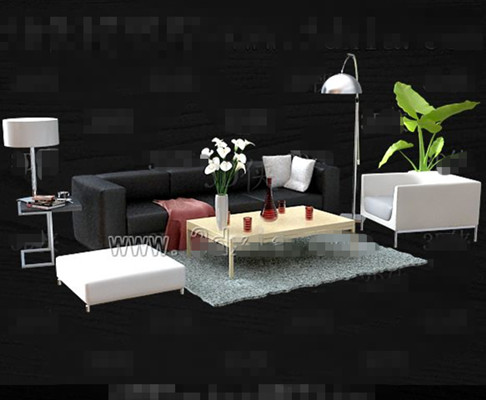 Black and white simple and stylish sofa combination 3D Model