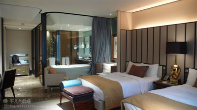 Commercial Interior Design: Business Hotel Standard Room 3D Model