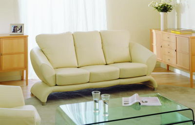 Many leisure sofa 3d model