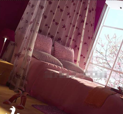Pink peach blossom bright bedroom 3D Model
