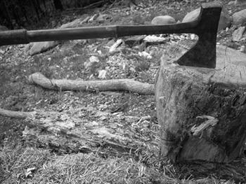Axe In Stump Free JPG