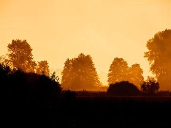 Early Morning Sun Free JPG