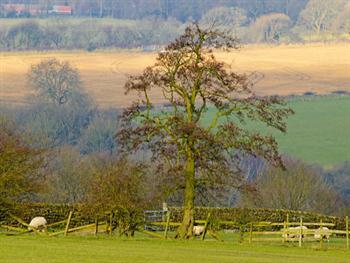 England Landscape Free JPG