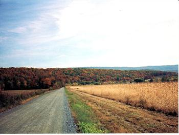 Fall Country Road Free JPG