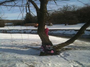 Girl In Winter Tree Free JPG