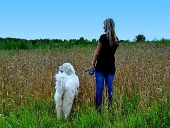 Girl With Dog Free JPG
