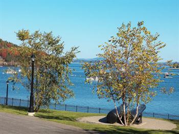 Harbor View Free JPG