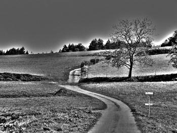 Landscape – Black And White Free JPG