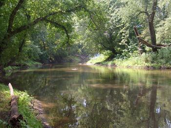 Lazy River Free JPG