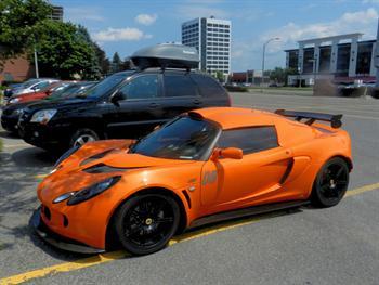 Lotus Orange