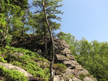 Mountain Scenery Free JPG