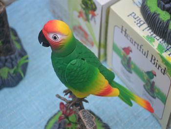 Parrot Free JPG