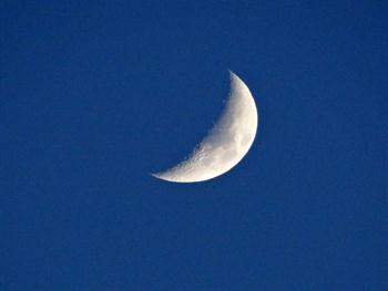 Quarter Moon Free JPG