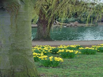 River Ouse In Spring Free JPG