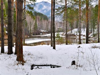 Snowy Landscape Free JPG