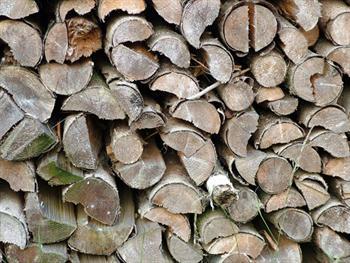 Stacked Wood Free JPG