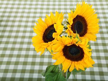 Three Sunflowers Free JPG