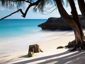 Tropical Beach Free JPG