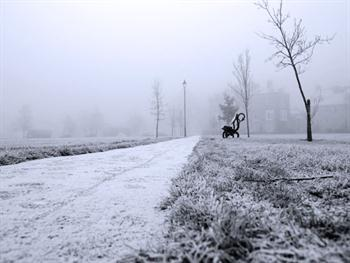Winter Fog Free JPG