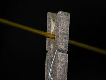 Wooden Peg On A Washing Line Free JPG