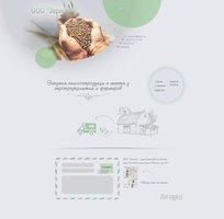 Zernoff company web design