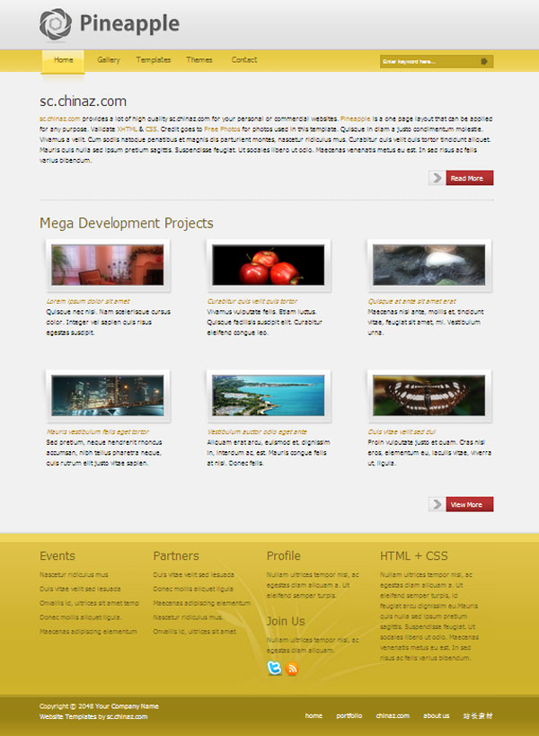 Corporate CSS page templates