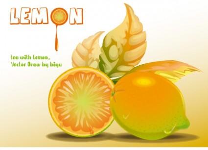 lemon vector graphics