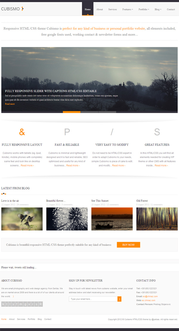 Personal portfolio showcase HTML templates