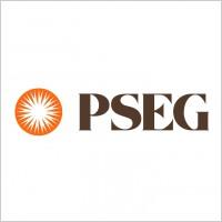 pseg 2 logo