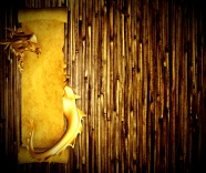 Aureus bamboo background photo