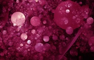 Wine red background picture